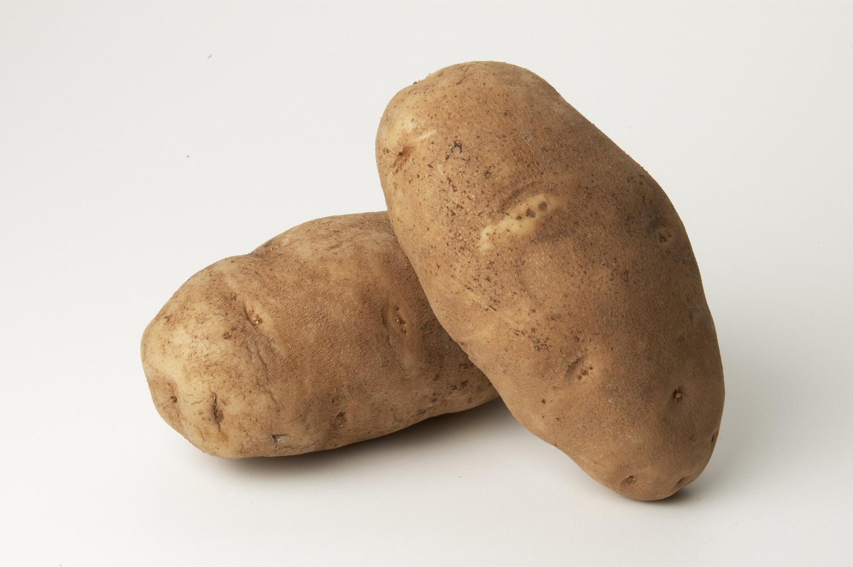 image of Russet Potato