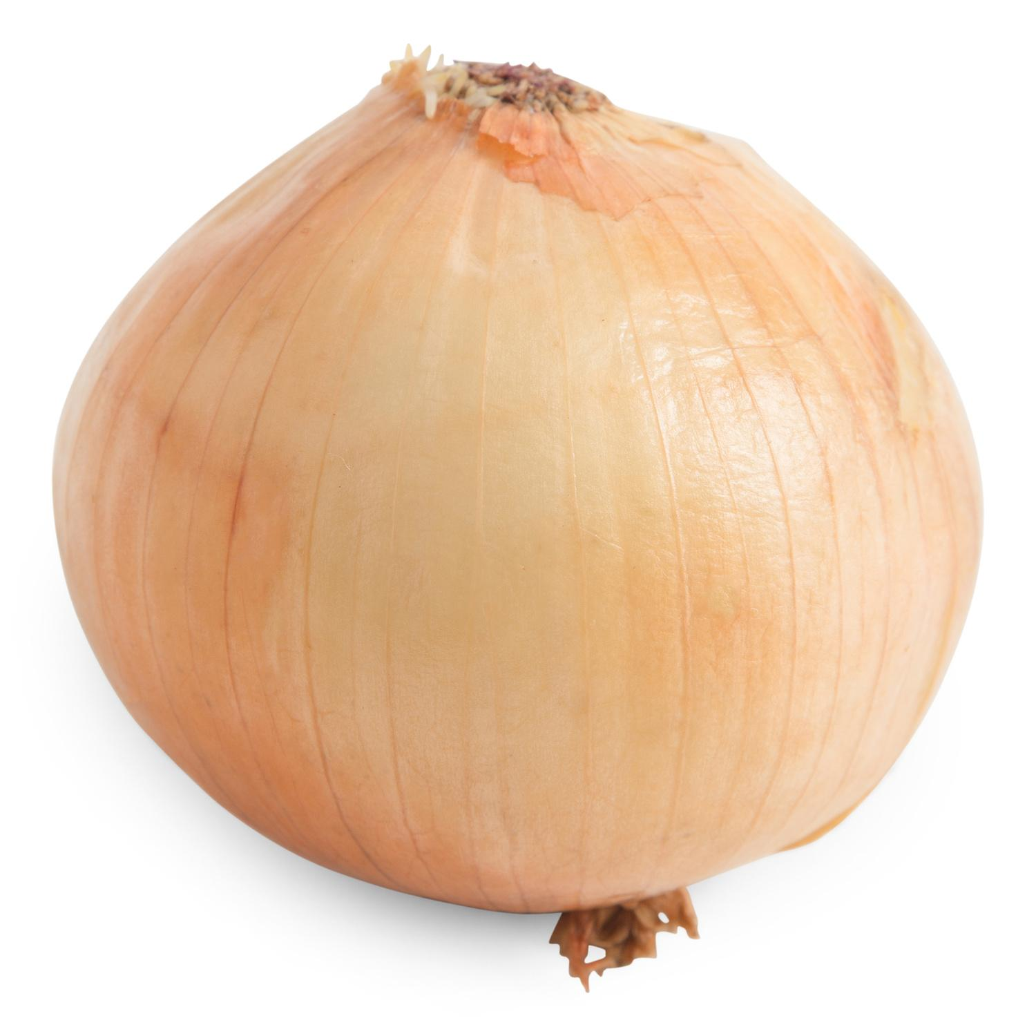 image of Fresh Yellow Onion