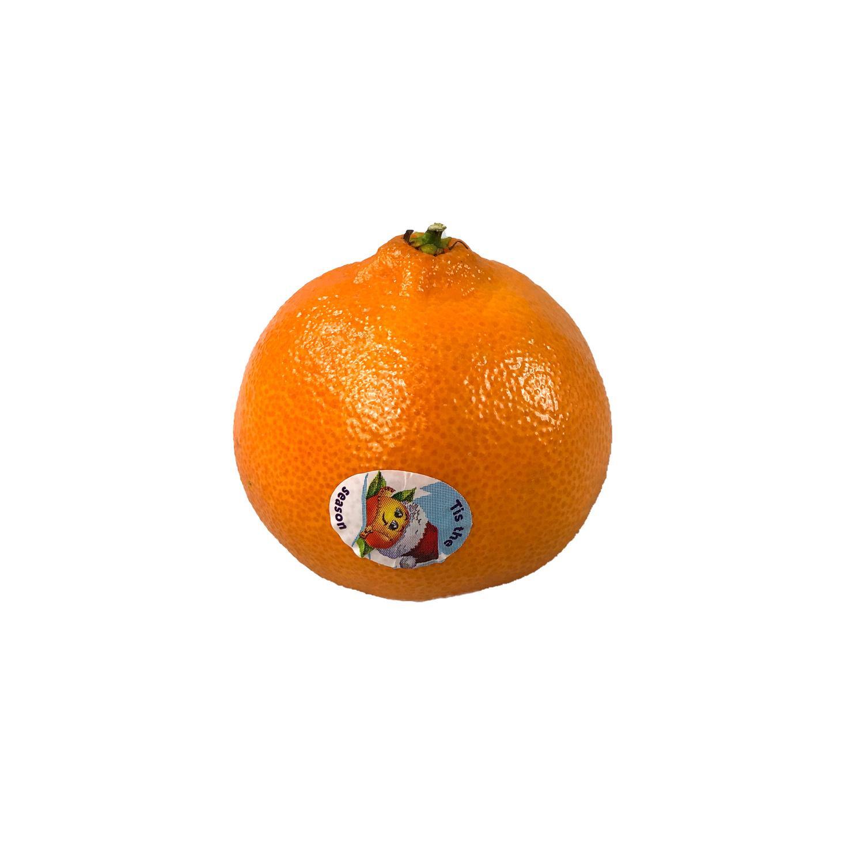 image of Tangerine