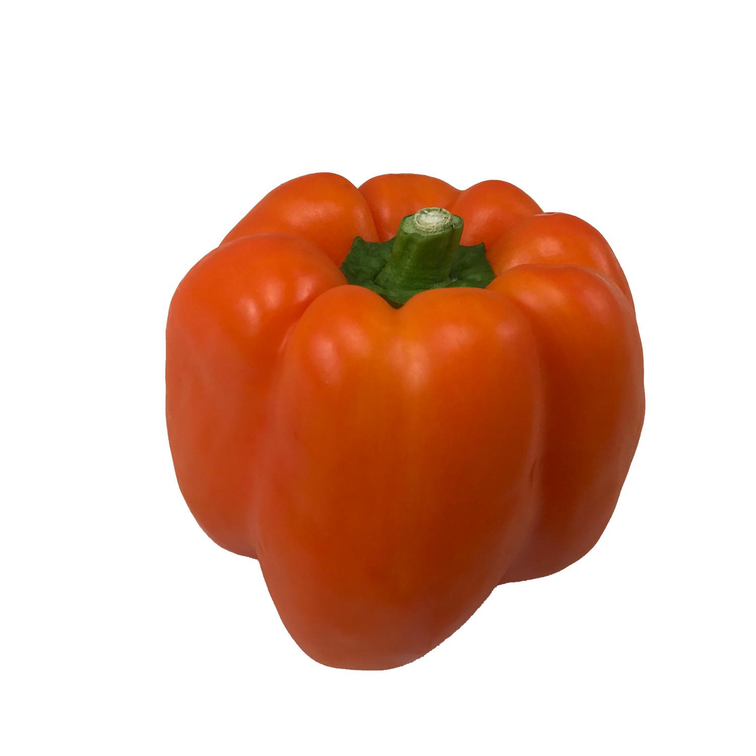image of Orange Bell Pepper