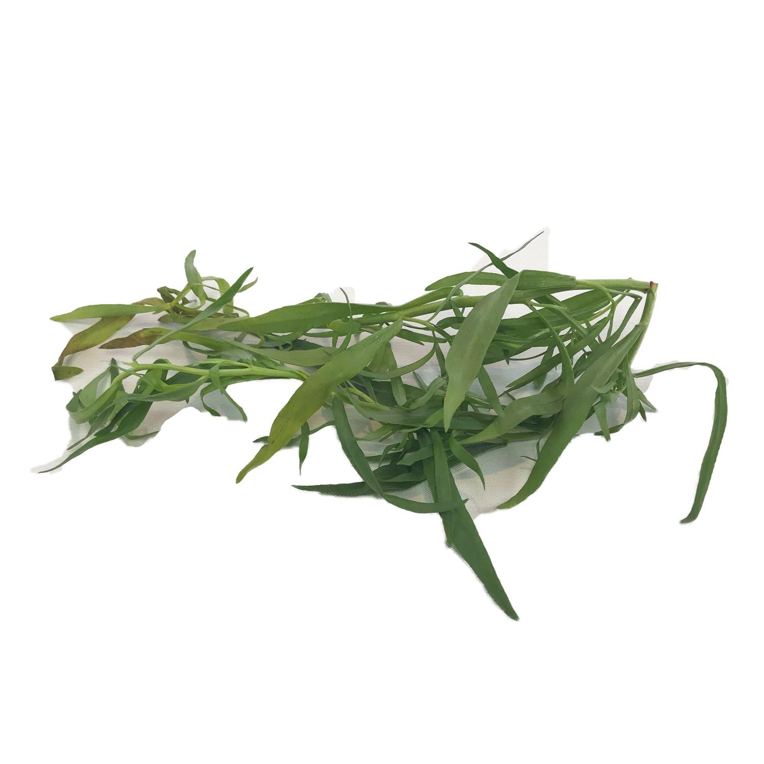 image of Fresh Tarragon