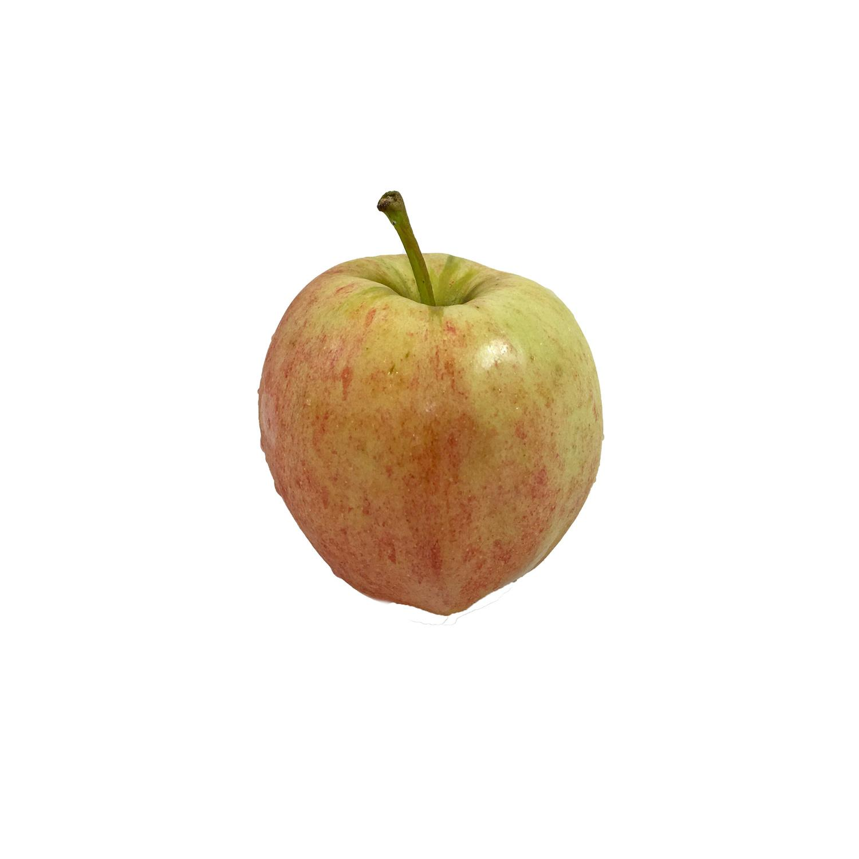 image of Apple Fresh Gala Royal