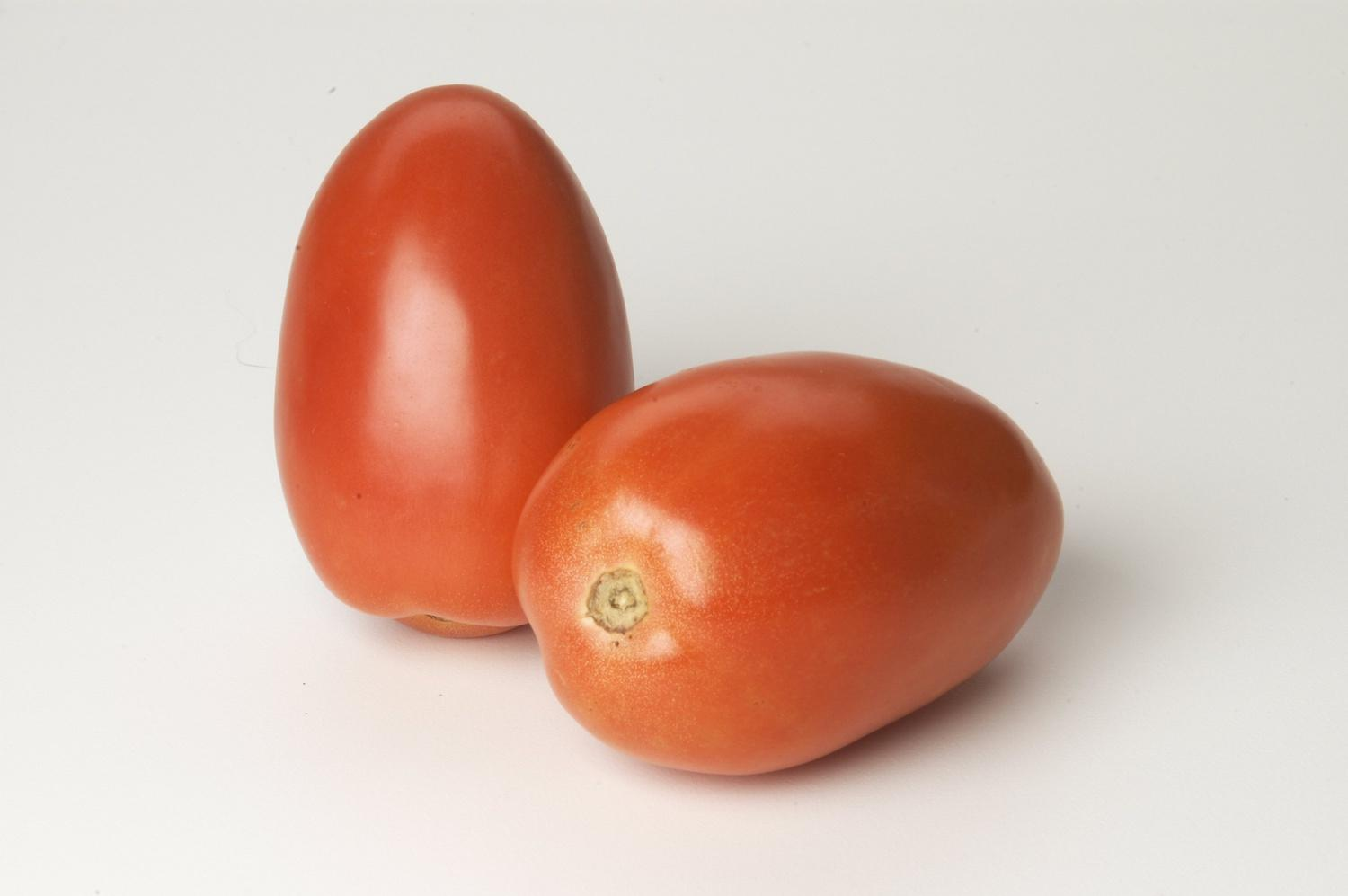 image of Fresh Roma Tomatoes (6894125)